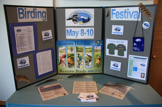 2015 Festival Display