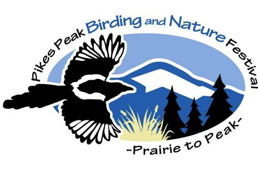 cropped-ppbnf-logo-3-1.jpg