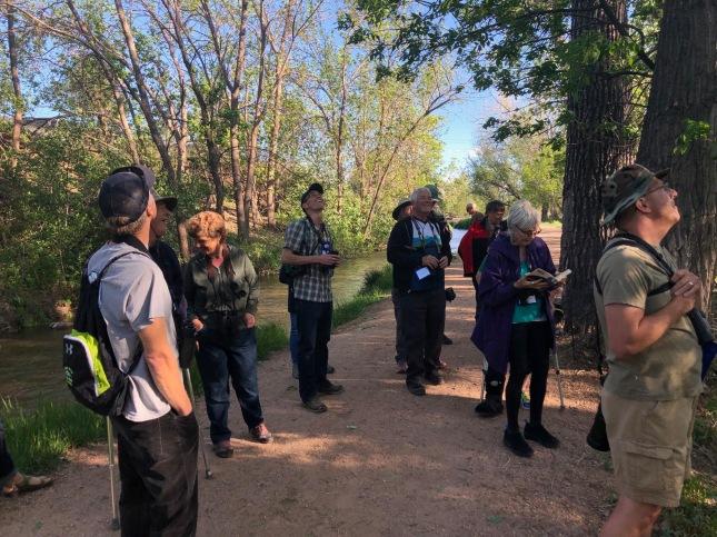 Fountain Creek County Park birding